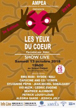 Les yeux du coeur, show live