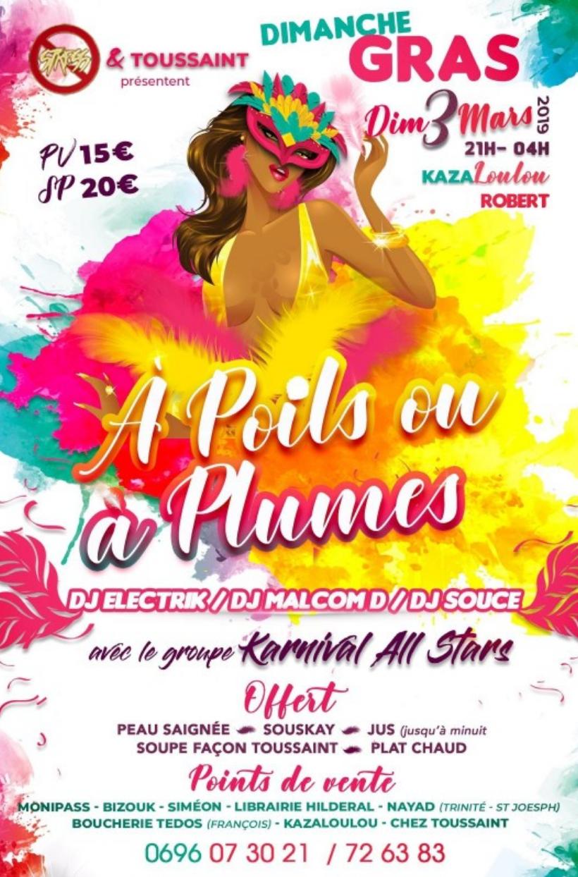 Soirée à poils ou à plumes – Carnaval Martinique