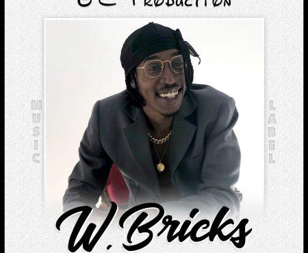 W.Bricks un artiste à découvrir