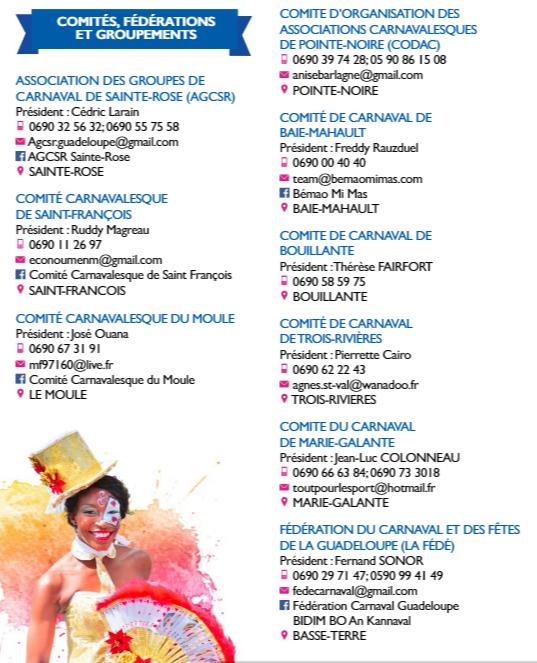 Ils organisent le carnaval 2020 en Guadeloupe
